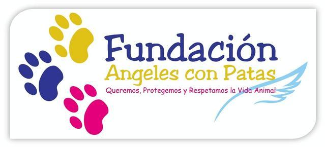 Las Fundaciones