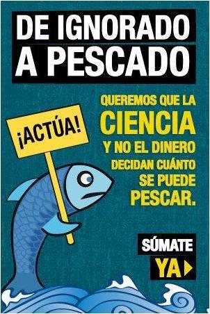 La Responsabilidad Social y la Pesca Sostenible.