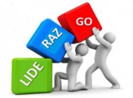 Liderazgo-300×222
