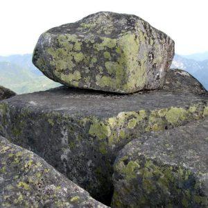 liquenes-sobre-rocas-granito-1024x683