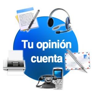Imagen de Encuestas