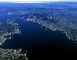 Ria de Vigo