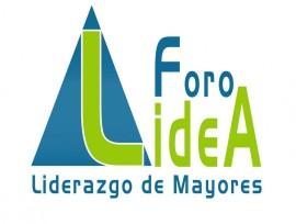 20151008175028-lidea-logo-2015-web (1)