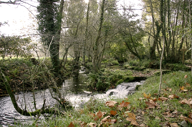 O río dos Gafos
