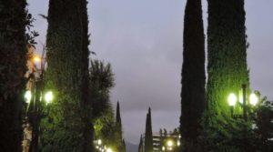 reflejos-de-la-noche-800x445